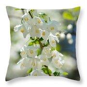 Carolina Silverbells In Spring Throw Pillow