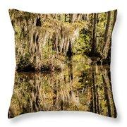 Carolina Swamp Throw Pillow