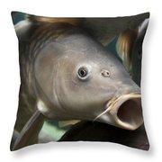 Carp Throw Pillow
