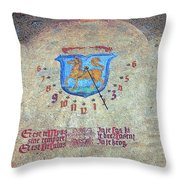 Carpe Diem I Throw Pillow