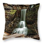 Carpenter Falls Throw Pillow
