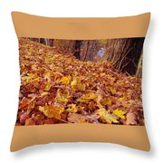 Carpet Of Fall Leaves Throw Pillow