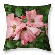 Carpet Roses Throw Pillow
