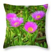 Carpobrotus Edulis Pink Ice Plant Throw Pillow