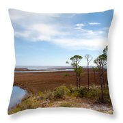 Carrabelle Salt Marshes Throw Pillow