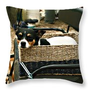 Carriage Dog Throw Pillow