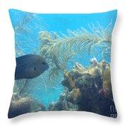 Carribean Sea Life Throw Pillow