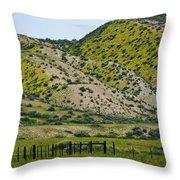 Carrizo Plain Daisy Hills Throw Pillow