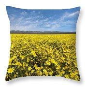 Carrizo Plain Desert Sunflower Field Afternoon Throw Pillow