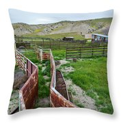 Carrizo Plain National Monument Ranch Throw Pillow