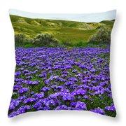 Carrizo Plain National Monument Wildflowers Throw Pillow