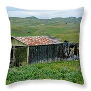 Carrizo Plain Ranch Throw Pillow