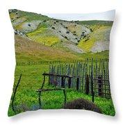 Carrizo Plain Ranch Wildflowers Throw Pillow