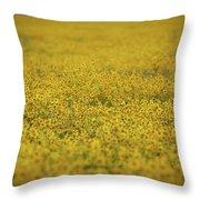 Carrizo Super Bloom Throw Pillow