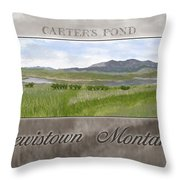 Carter's Pond Throw Pillow