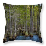 Carvers Cypress Throw Pillow