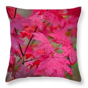 Cascade Autumn Leafs 1 Throw Pillow