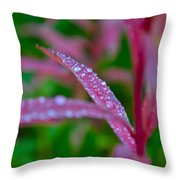 Cascade Autumn Leafs 11 Throw Pillow