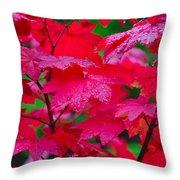 Cascade Autumn Leafs 2 Throw Pillow