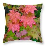 Cascade Autumn Leafs 4 Throw Pillow
