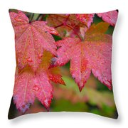 Cascade Autumn Leafs 5 Throw Pillow