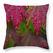 Cascade Autumn Leafs 8 Throw Pillow