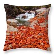 Cascade Brook Throw Pillow