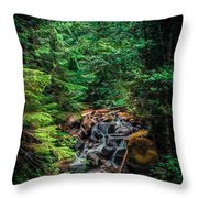 Cascade Creek Throw Pillow