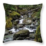 Cascade In The Rainforest Throw Pillow