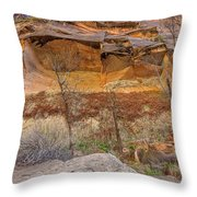 Cascade Of Glowing Sandstone Throw Pillow