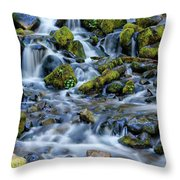 Cascade Of Many Waters Throw Pillow