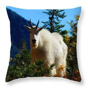 Cascade Range Mountain Goat Throw Pillow