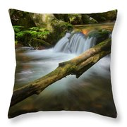 Cascade River Throw Pillow