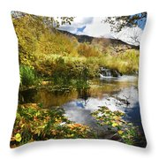 Cascade Springs Large Pool  Throw Pillow