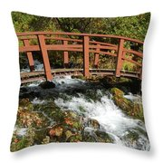 Cascade Springs With Bridge Throw Pillow