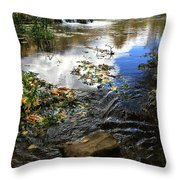 Cascade Springs With Rock Throw Pillow