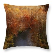 Cascade Valley Afternoon Throw Pillow