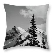 Cascades 1 Throw Pillow