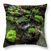 Cascades Fountains Throw Pillow