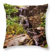 Cascades N Pool Throw Pillow