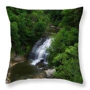 Cascadilla Waterfalls Cornell University Ithaca New York 02 Throw Pillow