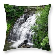 Cascadilla Waterfalls Cornell University Ithaca New York 03 Throw Pillow