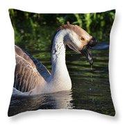 Cascading Elegance Throw Pillow