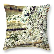 10196 Cascading Water 01b Throw Pillow