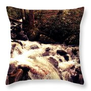 Cascading Waterfall Throw Pillow