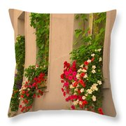 Cascading Windows Throw Pillow
