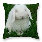 Casper Throw Pillow