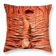 Cast In Clay Throw Pillow