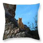 Castle Cat Throw Pillow