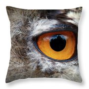 Castle In The Owl's Eye Throw Pillow